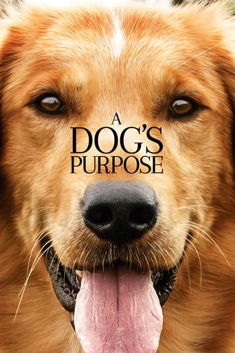 download A Dog's Purpose