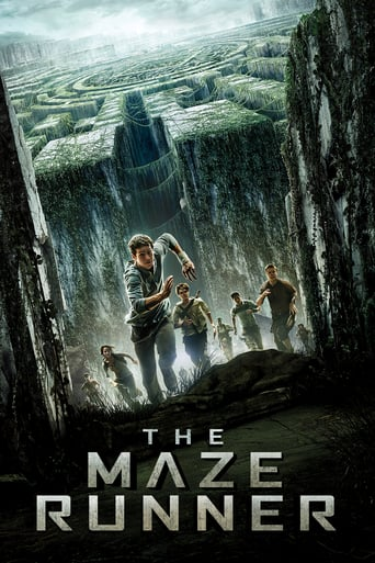 download The Maze Runner