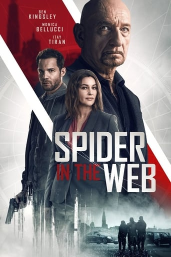 download Spider in the Web