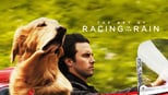 download and watch online The Art of Racing in the Rain