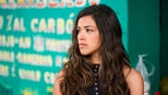 download and watch online Miss Bala