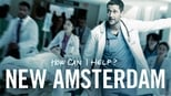 New Amsterdam images