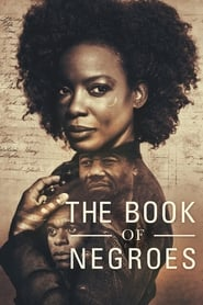 The Book of Negroes series