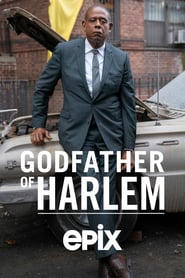 Godfather of Harlem movie